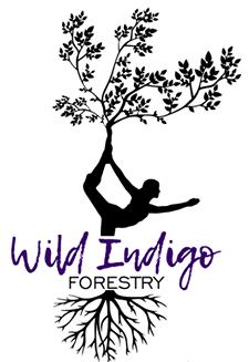 Western Kentucky Forestry